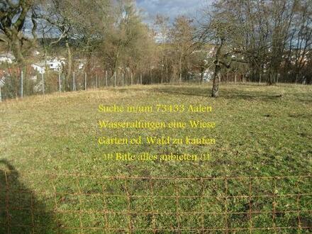 Suche Garten, Wiese oder Wald in/um 73433 Aalen-Wasseralfingen