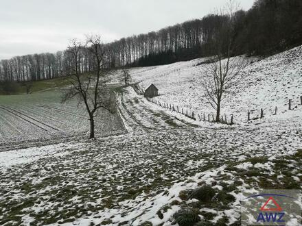 Ziegel-Massiv, schlüsselfertig inkl. Keller und Grundstück in Gmunden