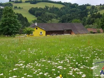 Bezirk Scheibbs: Bergbauernhof mit ca. 12 ha in sonniger Alleinlage!