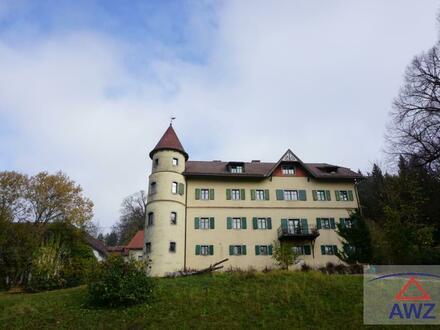 Große Mietwohnung im Schloss und Träume werden wahr!