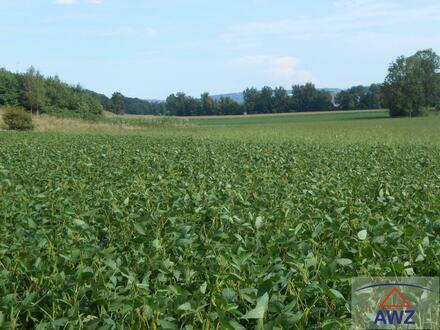 Toplage - Acker, Wiese und Wald zu verkaufen, Gesamt ca. 8.5 ha