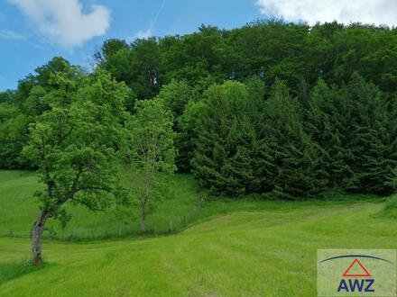 Grundstück für Ruhesuchende mit angrenzendem Wald!