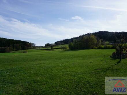 RESERVIERT Verkaufe ca. 10 ha landwirtschaftiche Fläche nähe Freistadt
