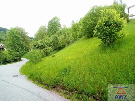 TOP-Gelegenheit - Größeres Grundstück in der Stadt Waidhofen an der Ybbs