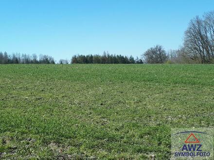 RESERVIERT - Schönes Grundstück mit ca. 25000 m² nähe Wels!