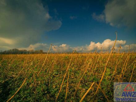 Landwirtschaft mit ca. 9,5 ha in Hirschbach zu verkaufen