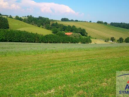 ca. 5 ha Acker und Wiesen mit Baugrund-Anteil