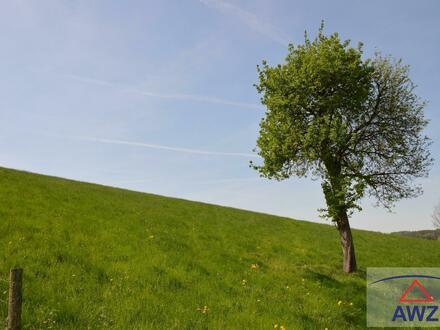 Schönes Grünland in Pennewang