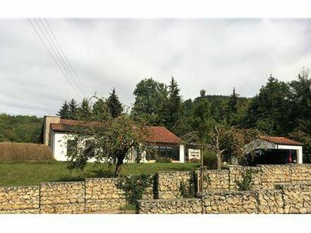 REMAX - Wunderschön gelegenes großzügiges Einfamilienhaus mit Pool!