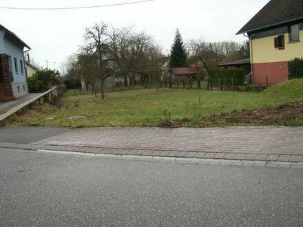 Baugrundstück in Munchhausen/Elsass Frankreich, Nähe Seltz, RA,KA, Wörth