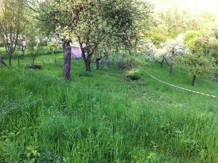 Gartengrundstück(e) Kernen-Stetten