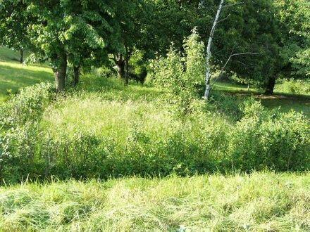 Gartengrundstück in Sternenfels