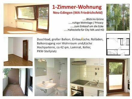 1 ZKB Balkon in Neu-Edingen / MA-Friedrichsfeld
