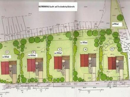 o. Prov. 920 m2 Baugrundstck Nr.2 Bederwitz/Rodewitz