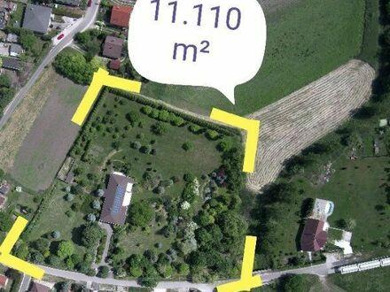 Anwesen in Ungarn, netzunabhängig, Selbstversorger, 45 km v. Budapest, Seenähe