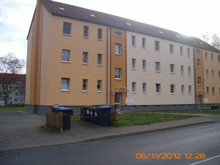 Schöne Erdgeschoß-Wohnung in Mutzschen