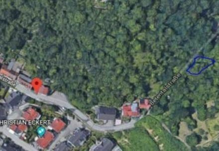 Wald/obstbaumgrundstück Weinheim Betentalstraße