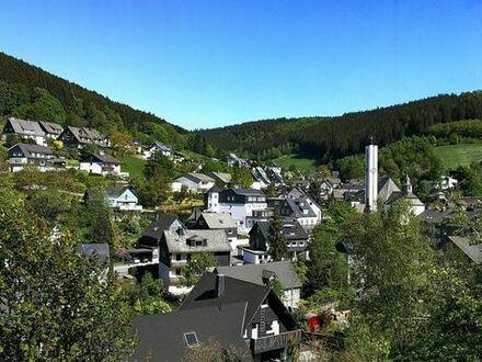 Baugrundstück 463 m2 in Winterberg-Silbach zu verkaufen. Nahe Ski-, Langlauf- + Wandergebiet