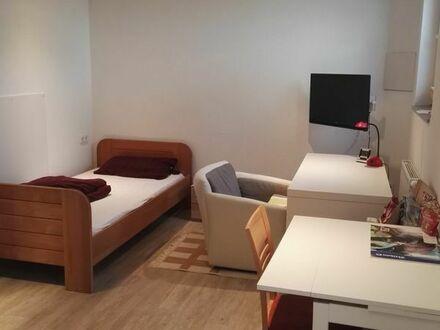 1 Zimmer Wohnung Lörrach / Eimeldingen