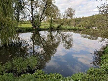 Idyllisches Grundstück mit Angelteich, Fischteich, Weiher, See