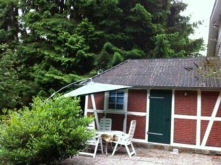 Kleines Haus im Grünen zur Miete