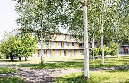 Untermiete: WG-Zimmer - Studentenwohnheim TH Brandenburg