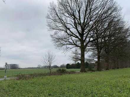 Landwirtschaftliche Fläche Dülmen - Aussenbezirk Rösterheide