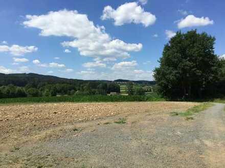 Wiese/Ackerland, für zukünftige Ausgleichsfläche, Tiergatter, Streuobstwiese, Bauerwartungsland