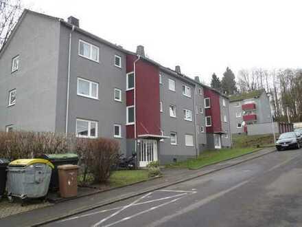 Schöne zwei Zimmer Wohnung 50 qm im Zentrum von Bad Marienberg