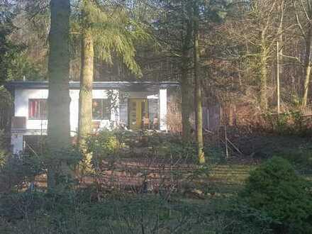 Haus am Waldrand mit großem Grundstück