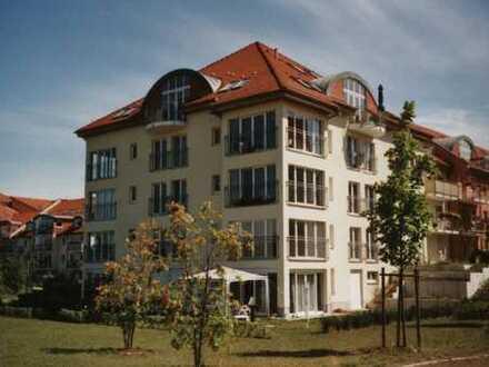 Attraktive 2,5 - Raum Wohnung mit Traumausblick im Barnimer Park