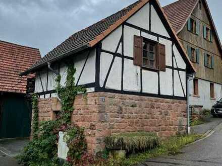 Sanierte Maisonette-Wohnung mit zwei Zimmern und Balkon in Hirschhorn (Neckar)
