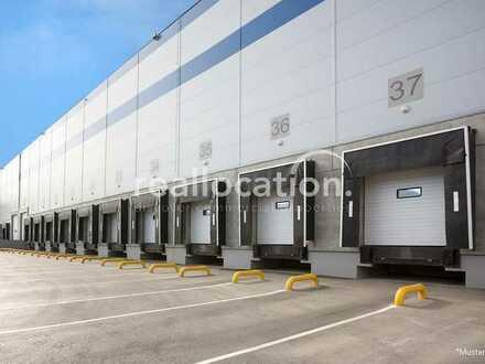 Lager/Logistikhalle - regaliert - besprinklert - gute Verkehrsanbindung