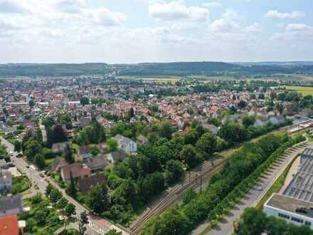 HERBST-AUKTION 2021: 4.000 m² Grundstück mit Kleingartenanlage - verpachtet
