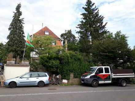 Mitbewohner/in für 3-er WG gesucht hallstatt.acht@web.de