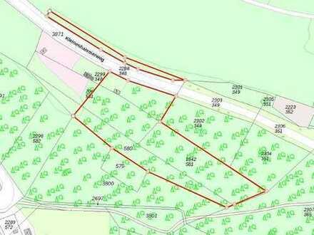 Waldgrundstück in Wuppertal! Auch Teilflächen möglich.