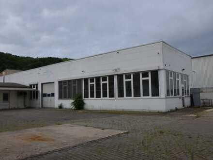Gewerbehöfe Godesberg-Nord - Halle - Lagerfläche