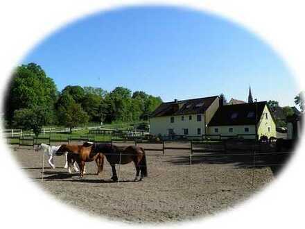 Tür an Tür mit Ihren Pferden! Großes Landhaus in idyllischer Lage an der Tauber südlich Rothenburg