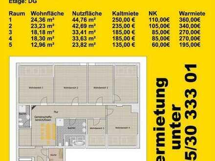 WG-Zimmer, Dachgeschoss, Zwickauer Innenstadt / Zentrum