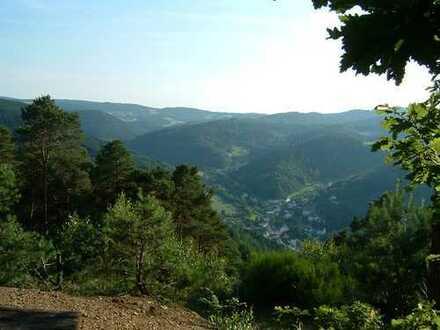 Wohnen, wo andere Urlaub machen - Grundstück mit eigenem Wald