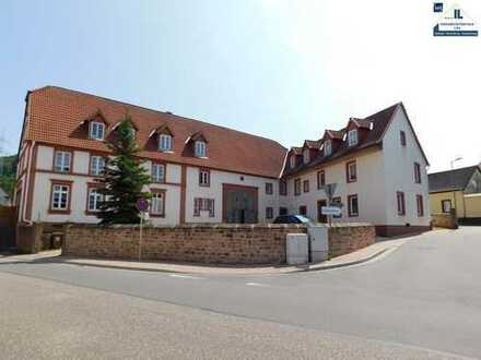 Bruchmühlbach-Miesau 1 Zimmer, Kochnische, Bad und Balkon für Kapitalanleger