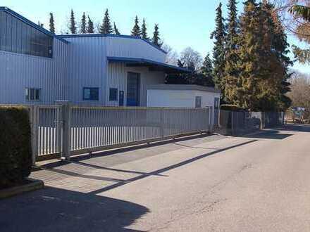 Großräumige Hallen als Produktionsflächen und Hochregallager zu vermieten