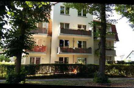 Gepflegte 2-Zimmer-Dachgeschosswohnung mit Terrasse in Hohen Neuendorf