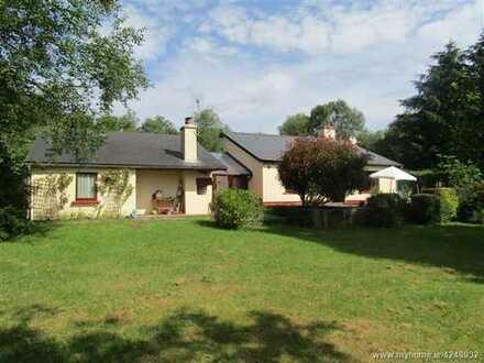 Hübsches Einfamilienhaus in der Nähe von Mount Shannon am Lough Derg-Shannon