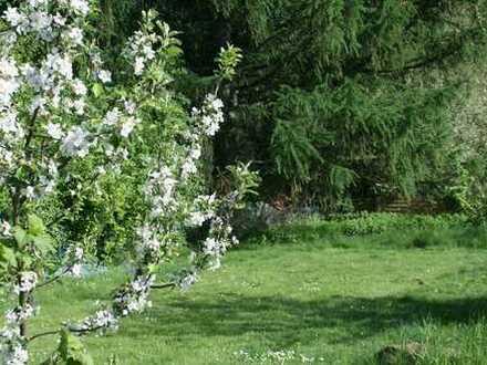Lust auf Sonne? Hier ist Ihr Garten!