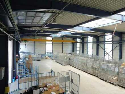 Produktions- und Lagerhalle mit 6,3 t Kran
