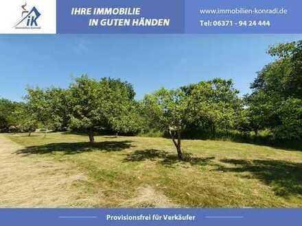Ein muss für Naturliebhaber - Großes Baugrundstück in Breitenbach