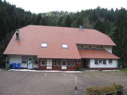 Im idyllischen Elztal Pension-Cafe am Waldesrand mit Forellenweiher, Bachlauf, Waldwiese & Park