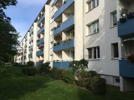 2-Raum-Wohnung am Fuße des Marienbergs