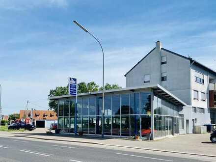 Verkaufs- & Ausstellungshalle m. KFZ-Werkstatt + Außenstellplätzen in exponierter Lage!